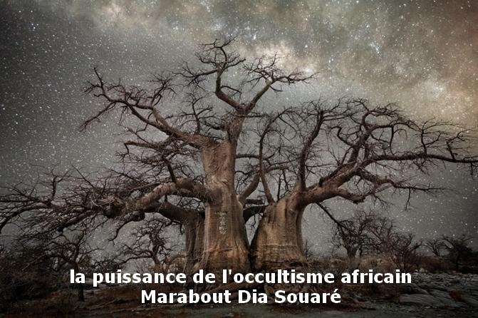 Marabout Dia Souaré